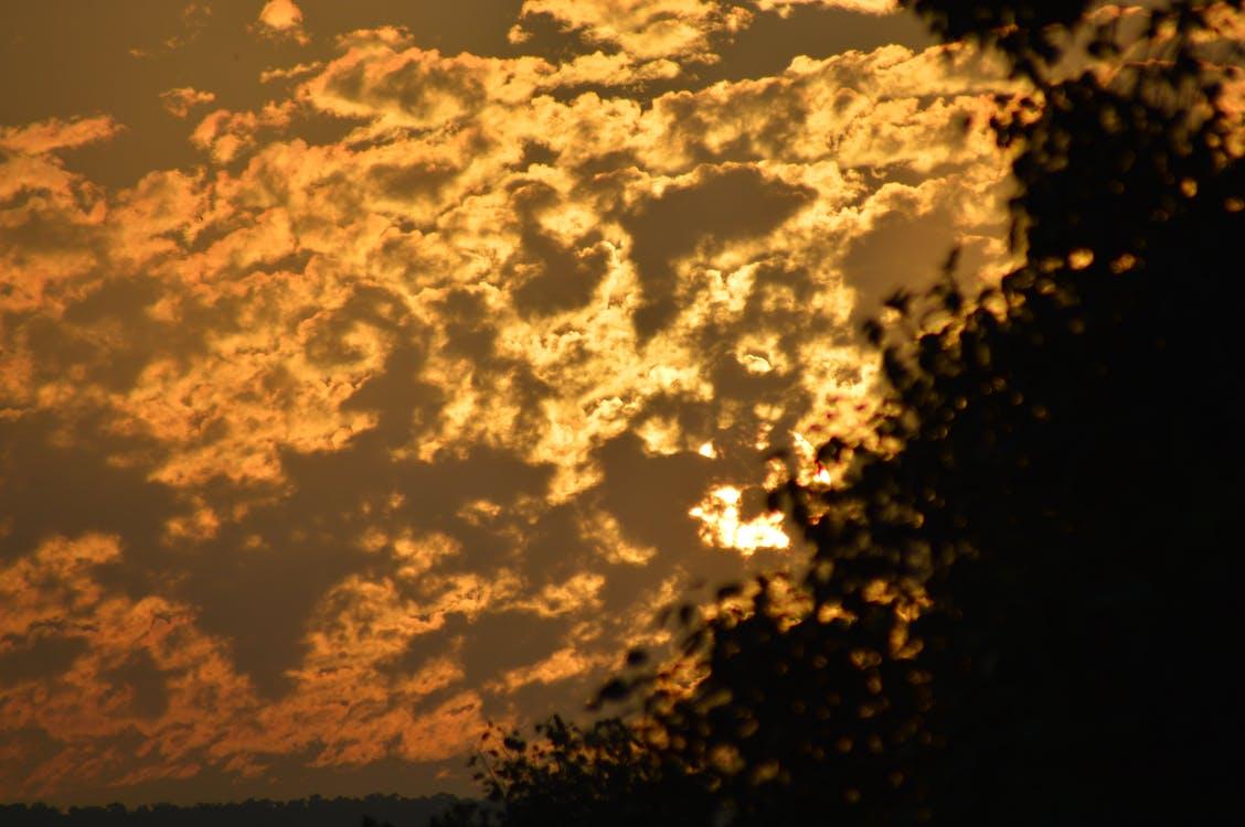 Free stock photo of evening sun, golden sun, setting sun