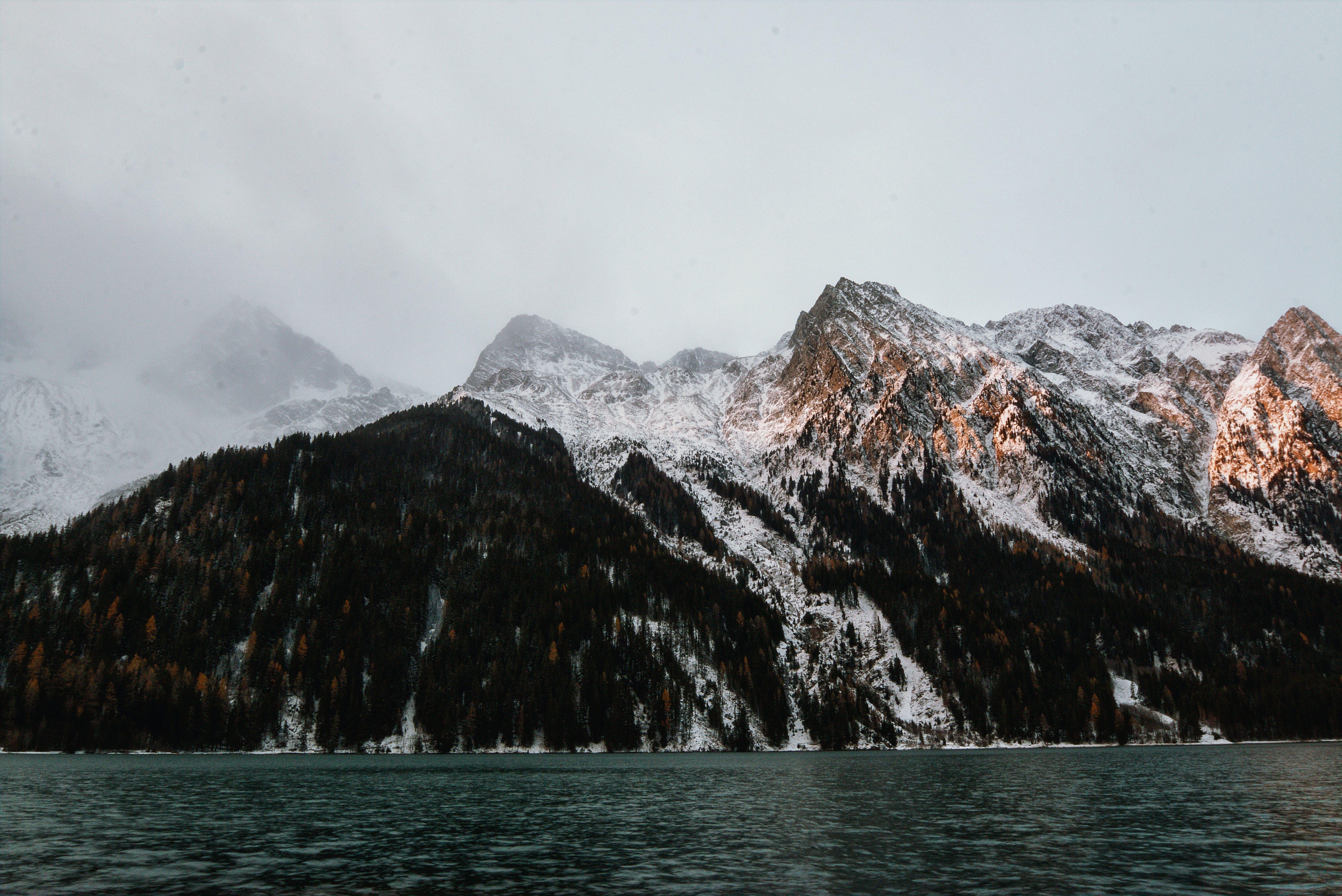 Foto stok gratis air, batu, dingin, Es