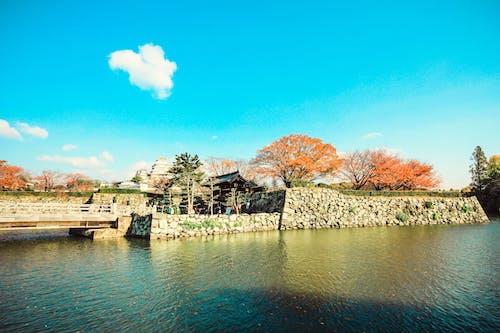 Darmowe zdjęcie z galerii z japoński