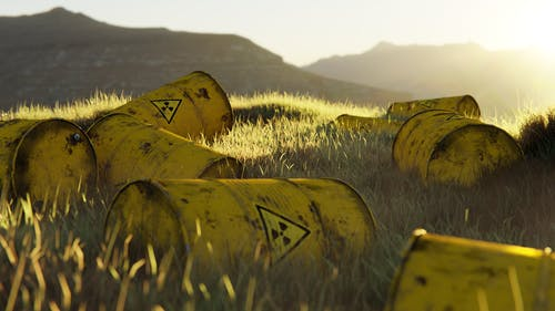 Yellow and Black Wooden Barrels on Green Grass Field