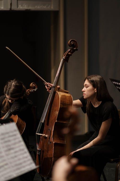 Woman in Black T-shirt Playing Violin