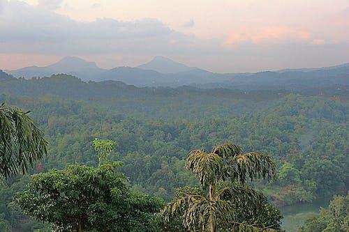 Foto stok gratis awan, berbayang, gunung, hijau