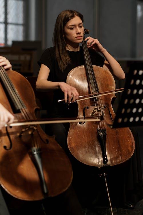Free stock photo of candid, cello, classic