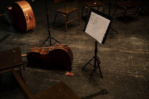 Free stock photo of art, cello, classical