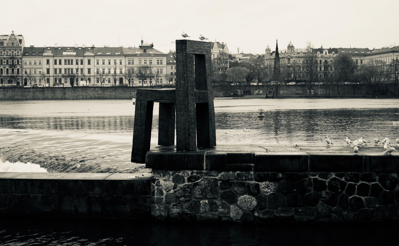 Free stock photo of river, street art, prague, black and white