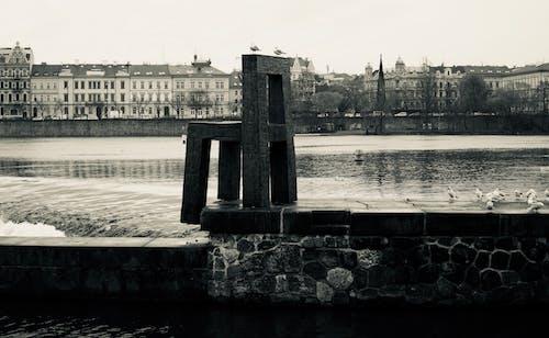Imagine de stoc gratuită din artă stradală, Praga, vltava