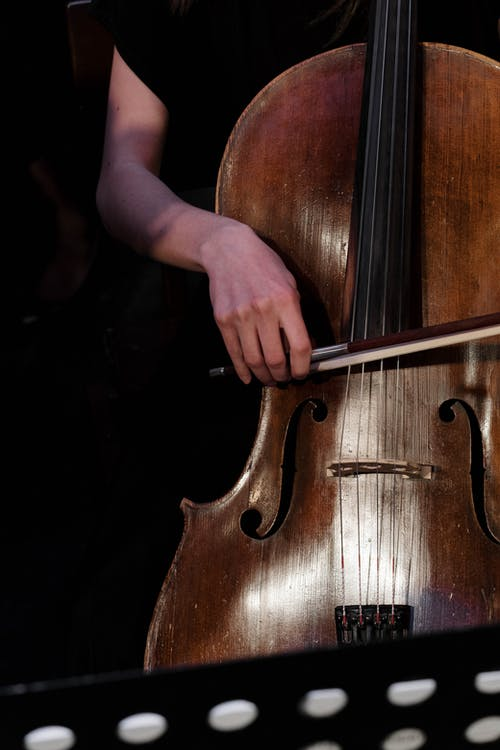 Free stock photo of art, bowed stringed instrument, candid