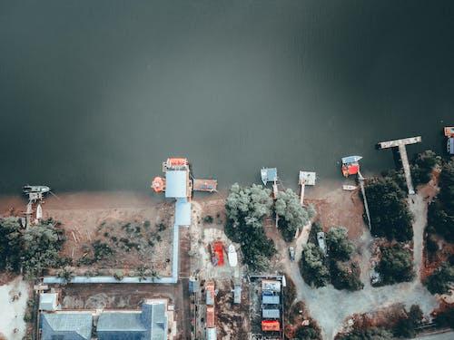 Dock with boats at river bank