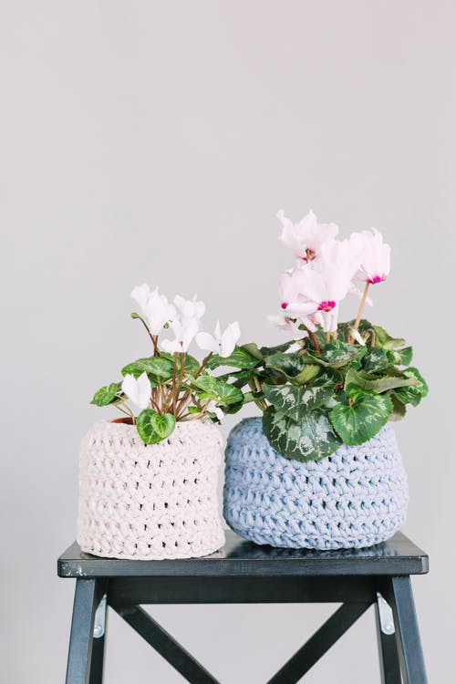Two White and Blue Crochet Flower Pot