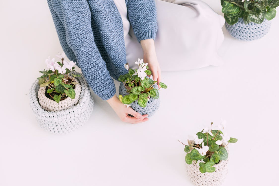 binnen, binnenshuis, bloemen