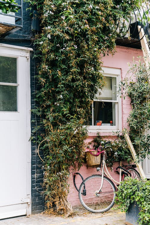 açık hava, Bahçe, bardak, bisiklet içeren Ücretsiz stok fotoğraf