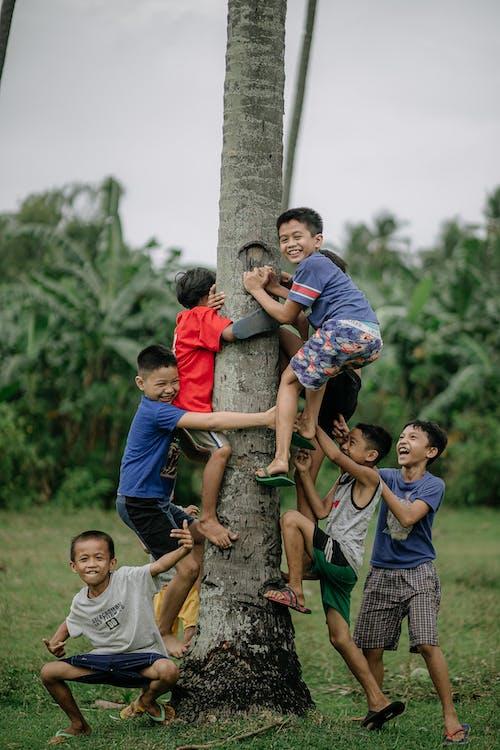 Základová fotografie zdarma na téma chlapec, denní světlo, děti
