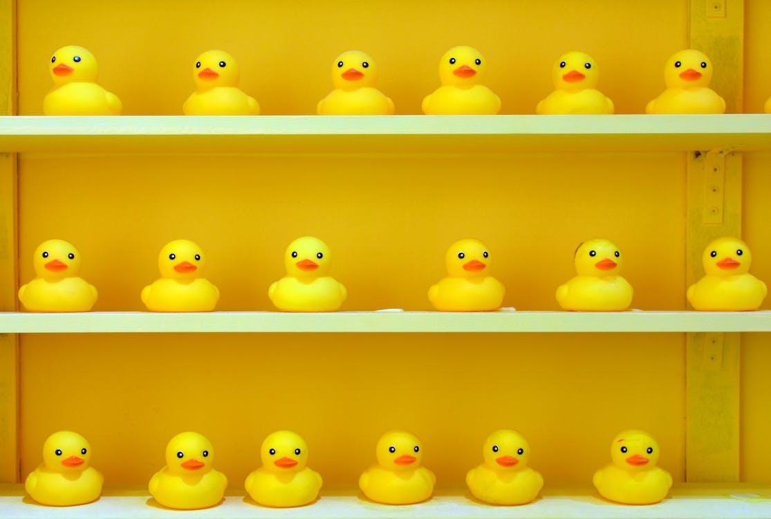 無聊IQ題-甚麼鴨有兩隻腳?