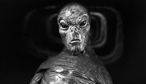 Free stock photo of Extraterrestre, fotografia, Reptiliano