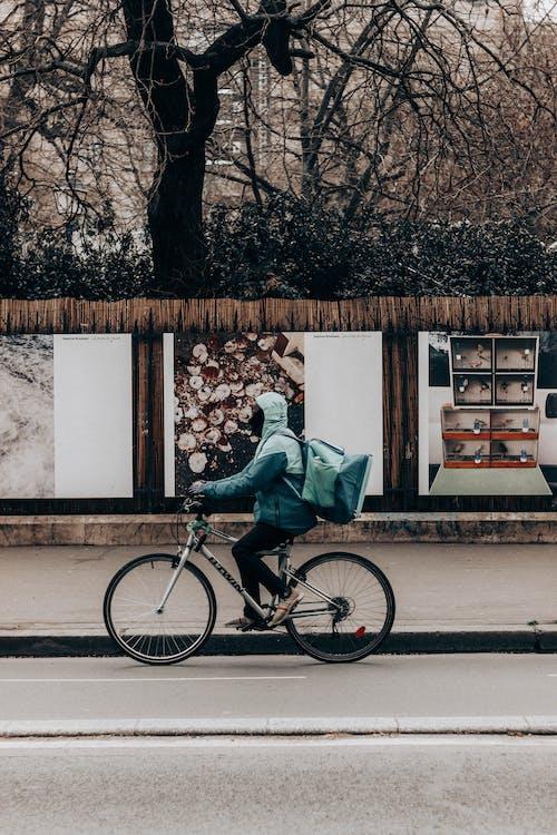 가방, 가을, 감기의 무료 스톡 사진