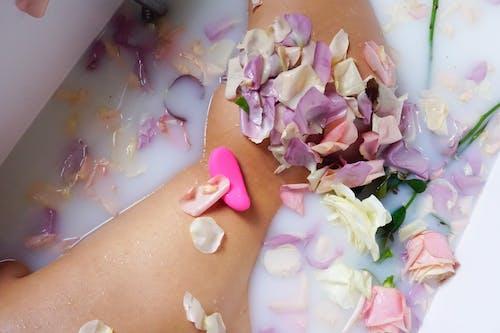 Free stock photo of artistic nude, Nude female, nude girl