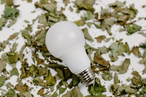 White Light Bulb on White and Brown Floral Textile