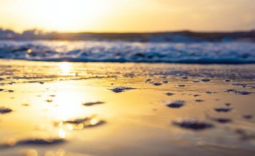 Безкоштовне стокове фото на тему «H2O, берег моря, великий план»