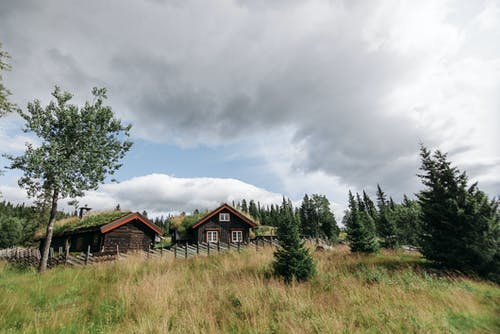 Wooden Houses in Grass Field Near Trees