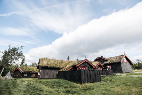 Wooden Houses with Grass on Roofs
