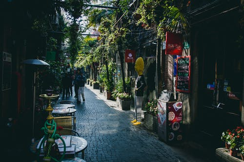 People on Street Between Buildings With Plants Photo