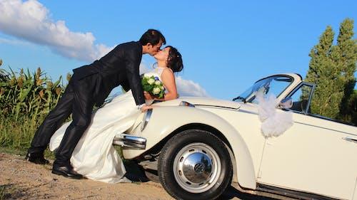 Fotos de stock gratuitas de boda, día de la boda, fotografía de boda