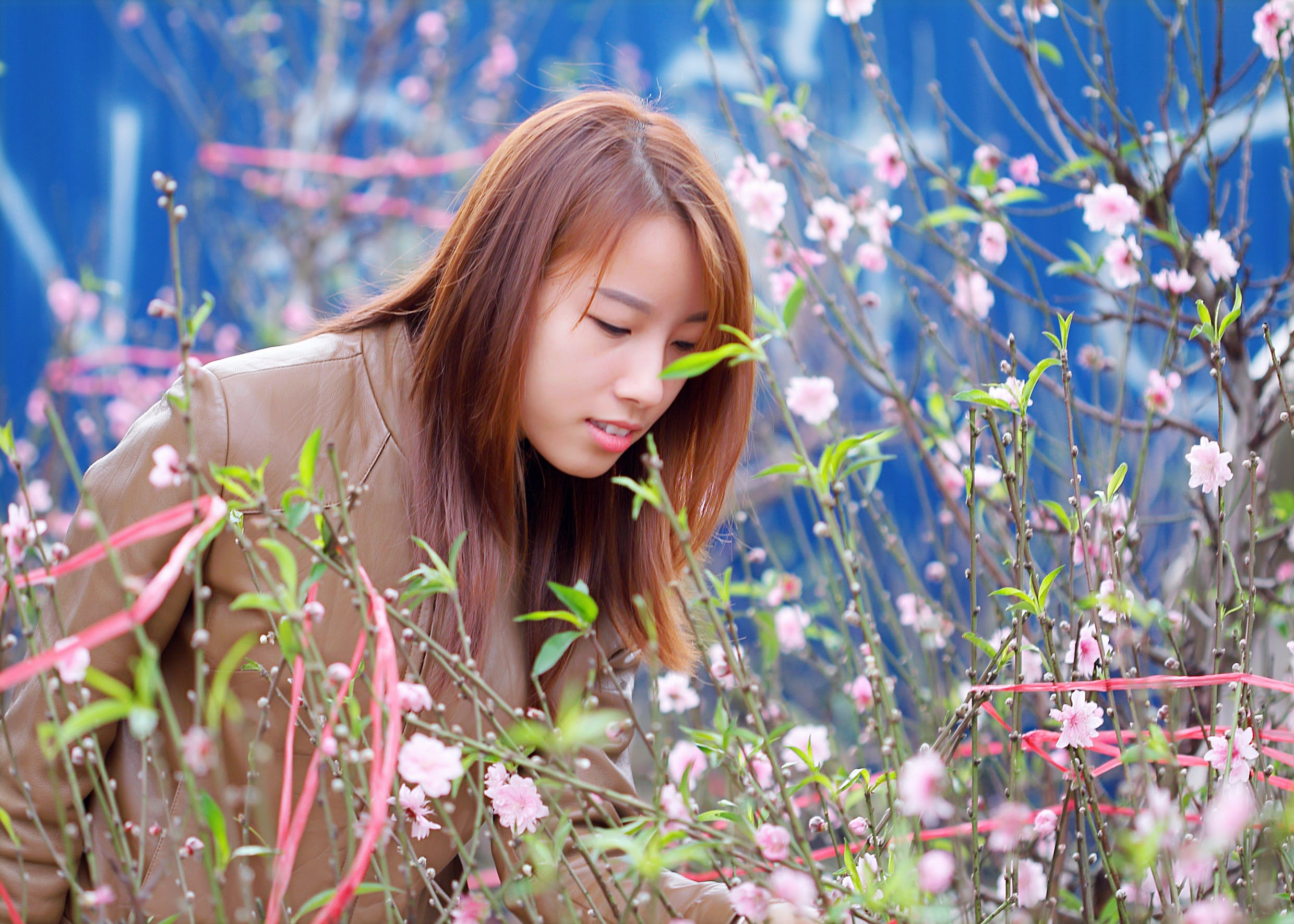 Woman Smelling The Pink Petaled Flowers