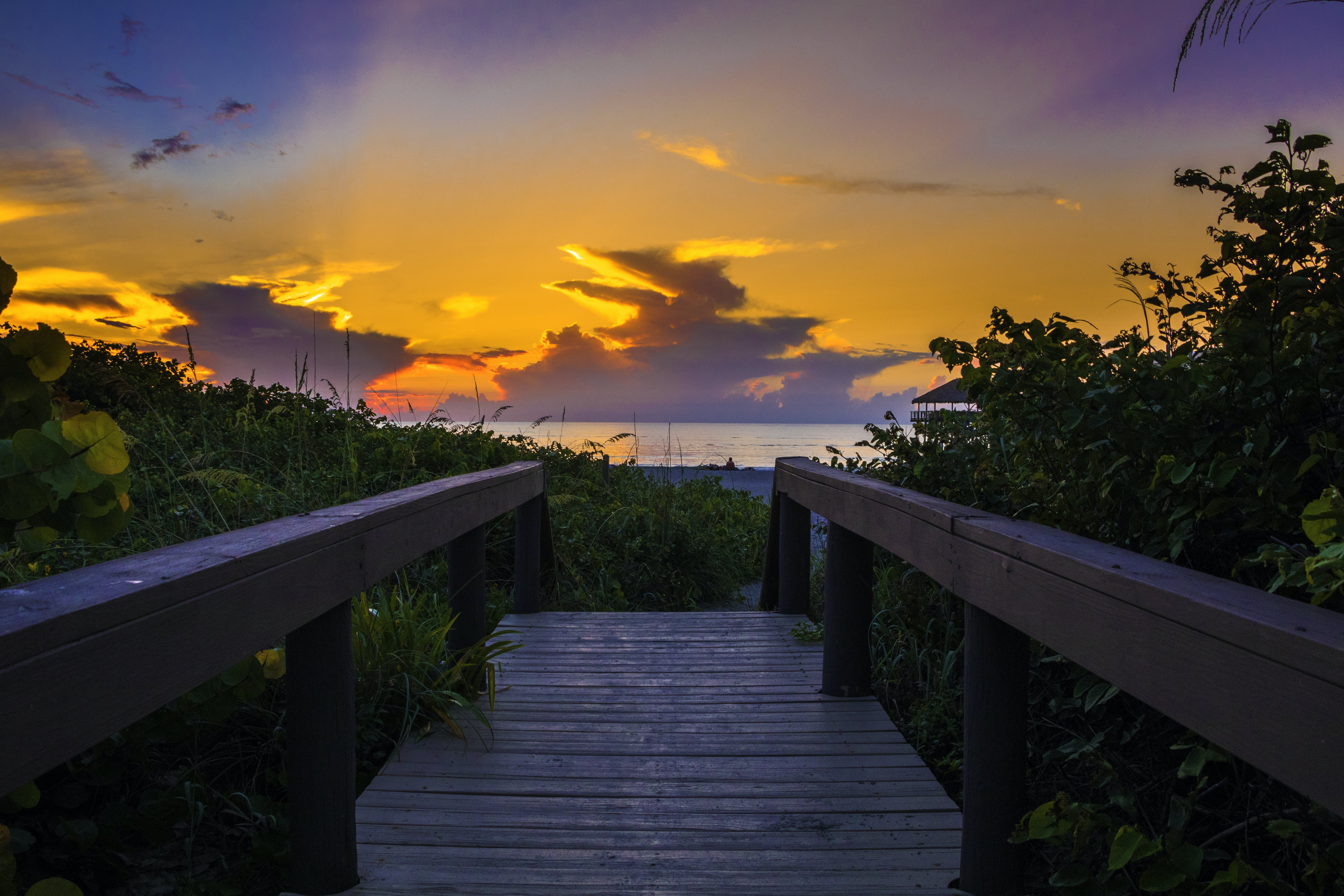 Photography of Wooden Bridge During Sunset