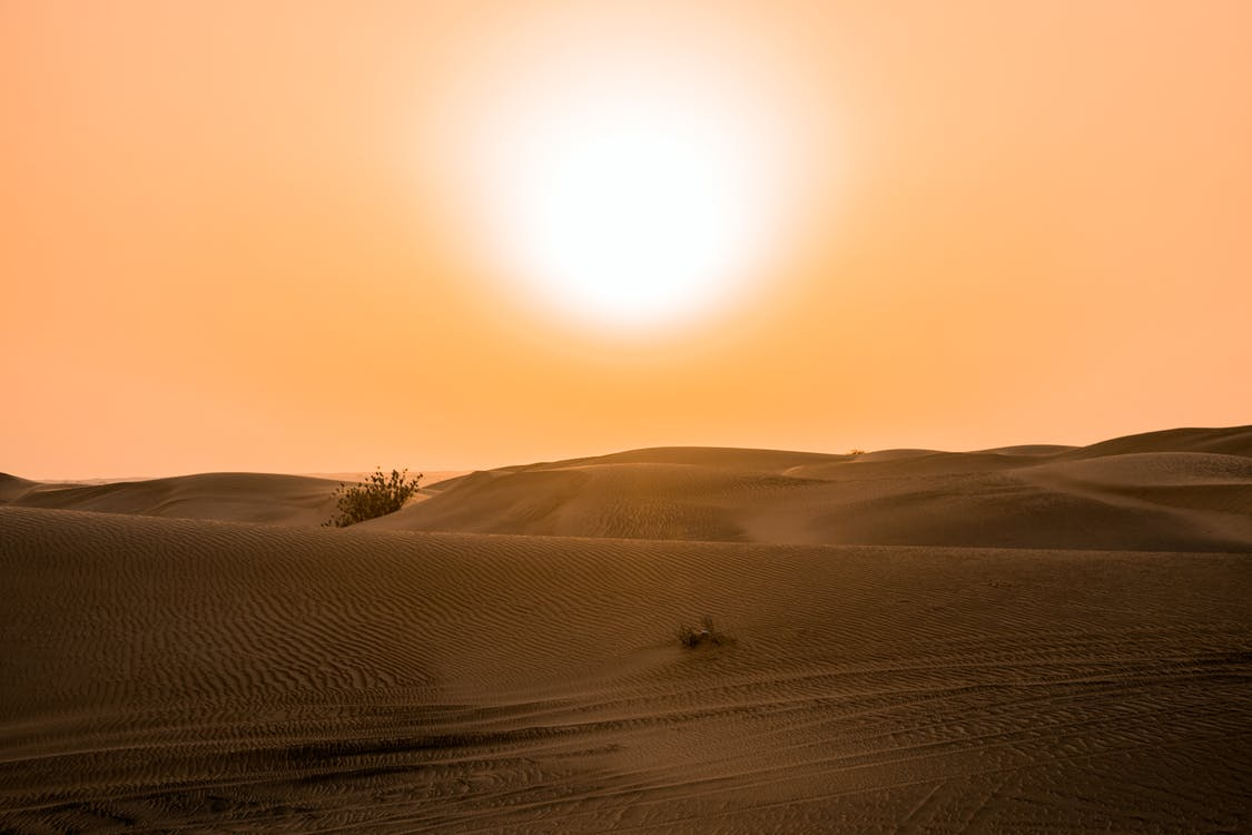乾旱, 乾的, 光