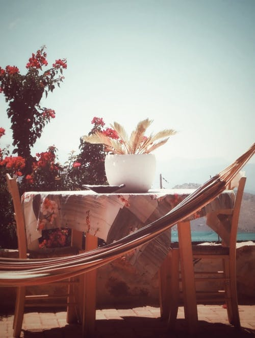 Free stock photo of blooming flowers, hammock, intimacy