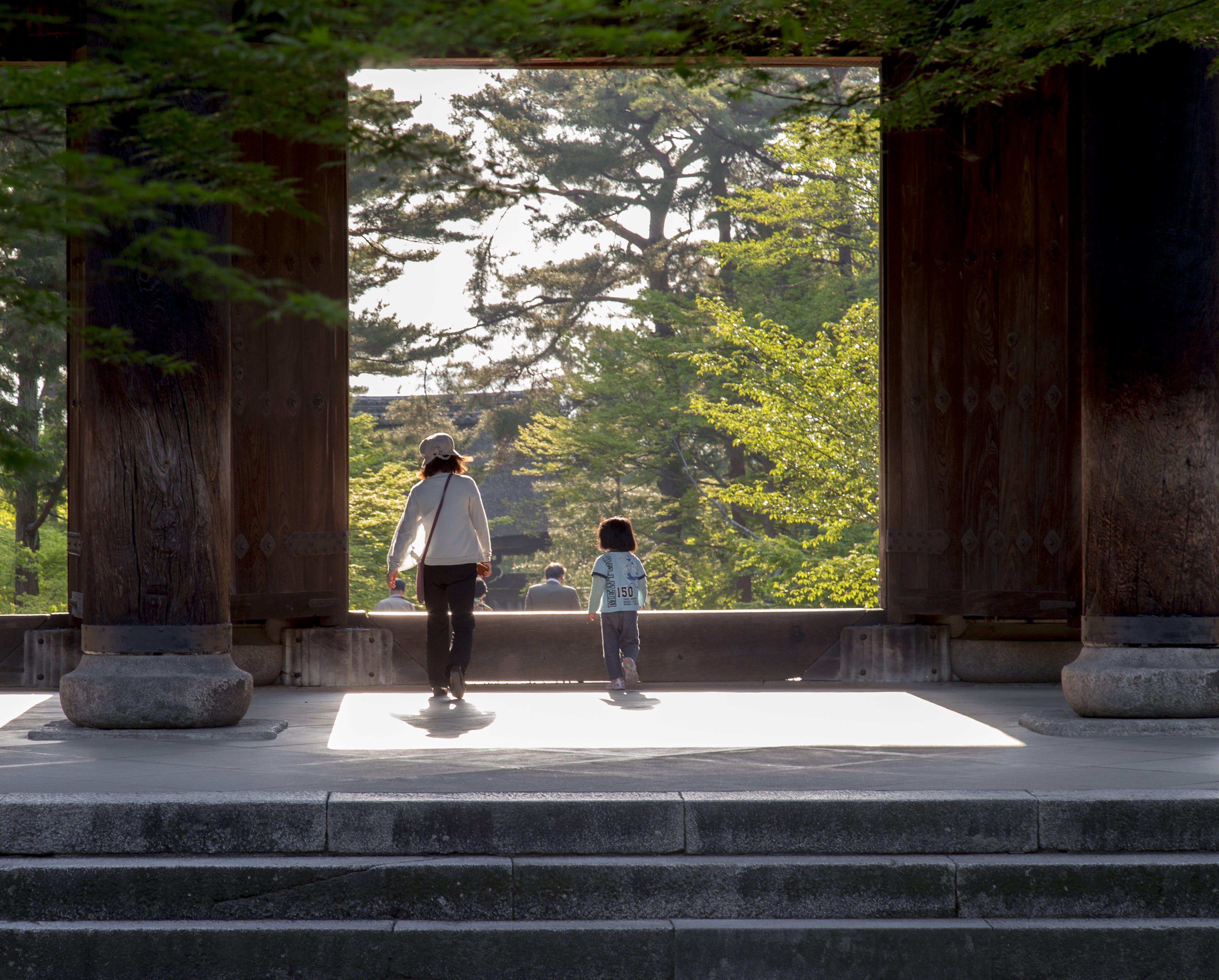 ağaçlar, aile, doğa, erkek çocuk içeren Ücretsiz stok fotoğraf