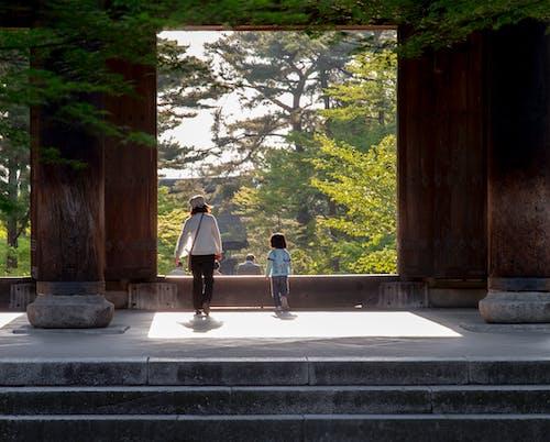 Foto stok gratis alam, anak laki-laki, Arsitektur, bayangan
