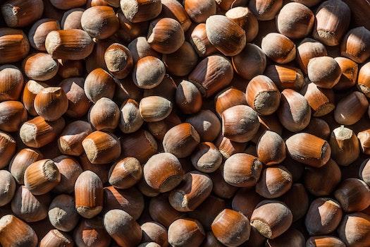 Plenty of Nuts