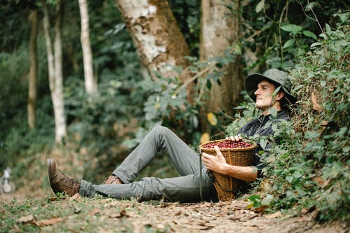 Calm man with basket of coffee berries resting in nature