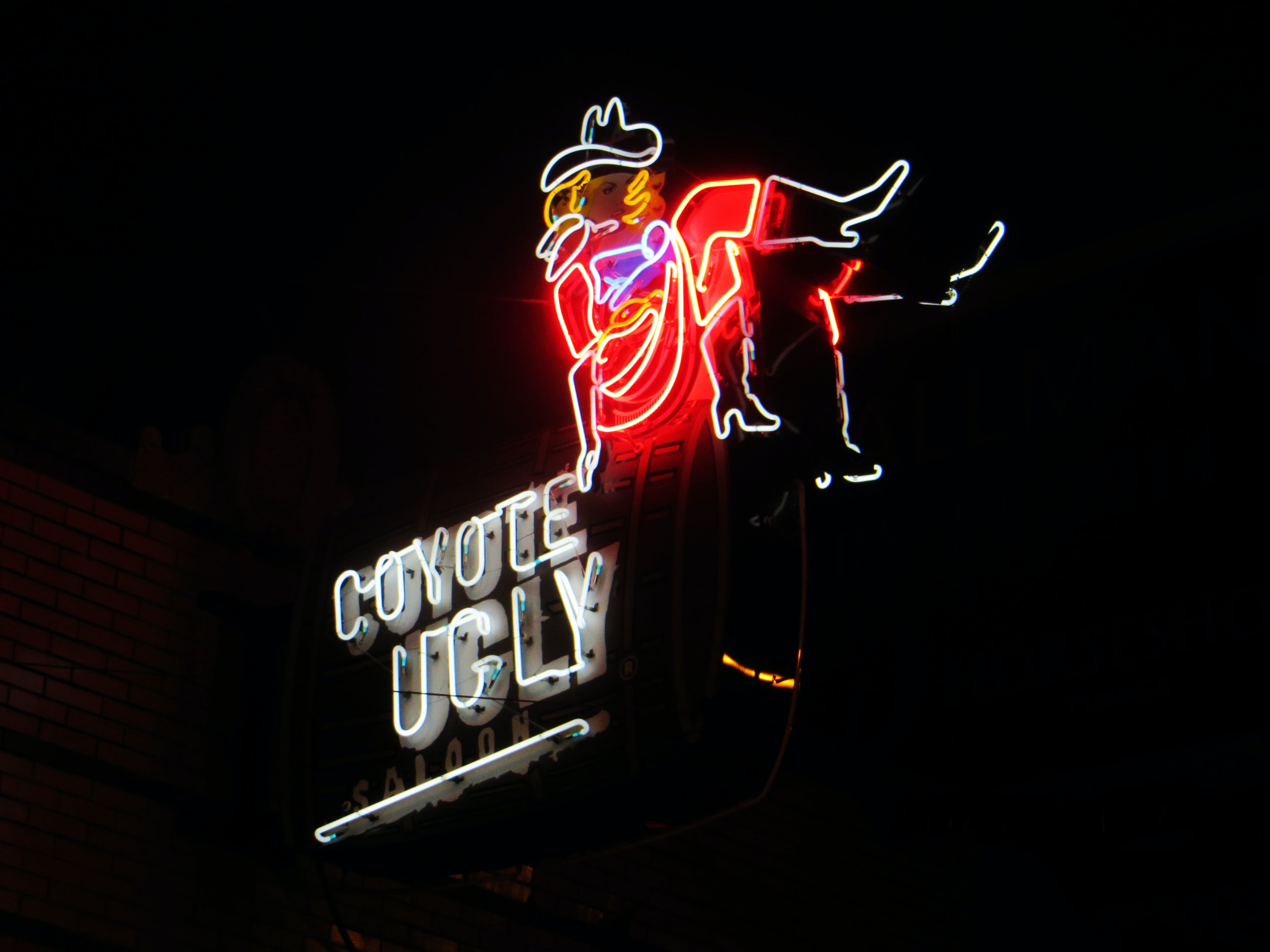 Coyote Ugly Neon Signage