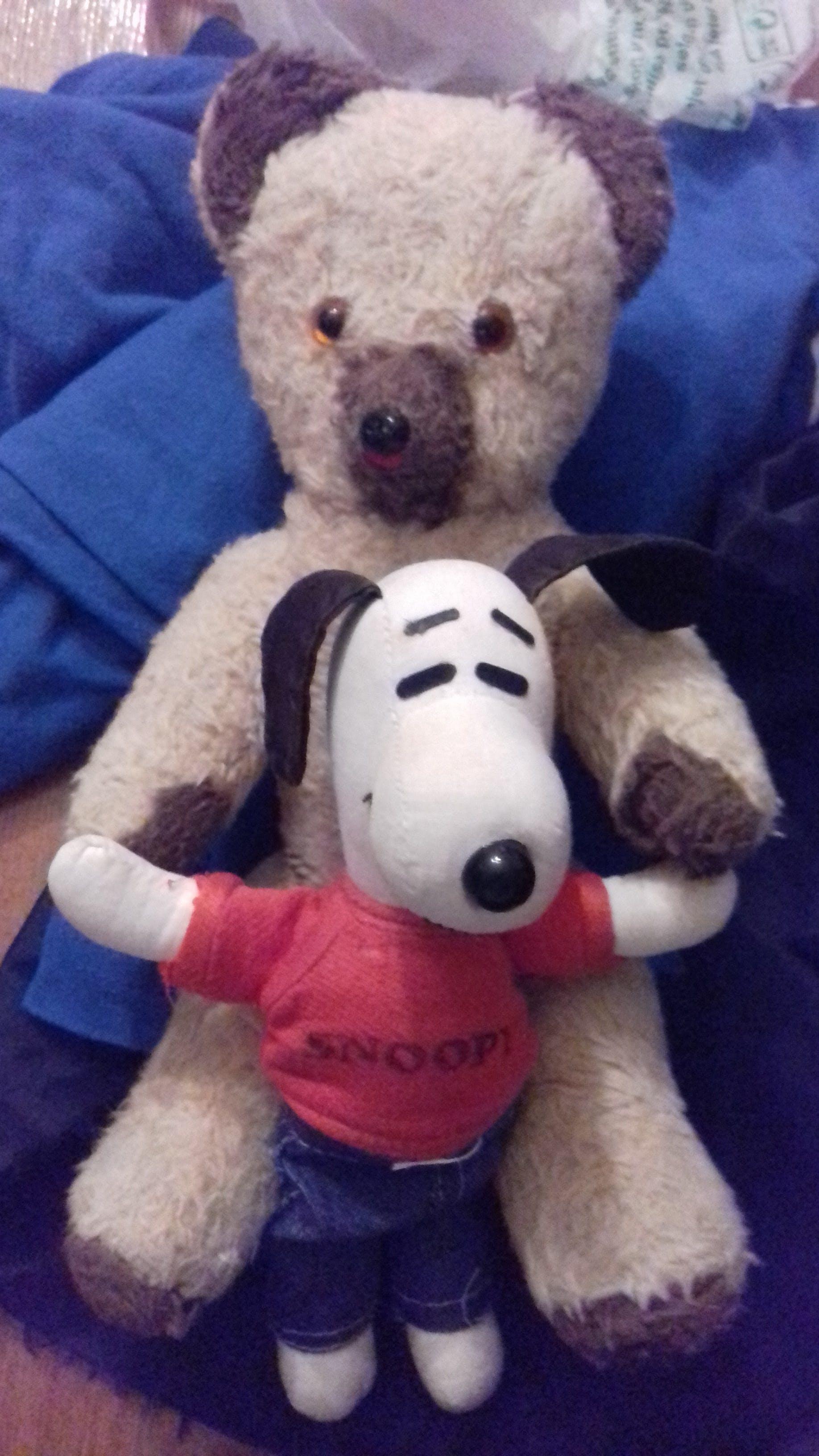 Free stock photo of snoopy, teddy bears