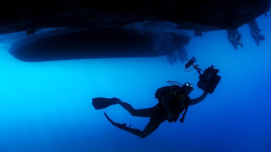 diver, ocean, person