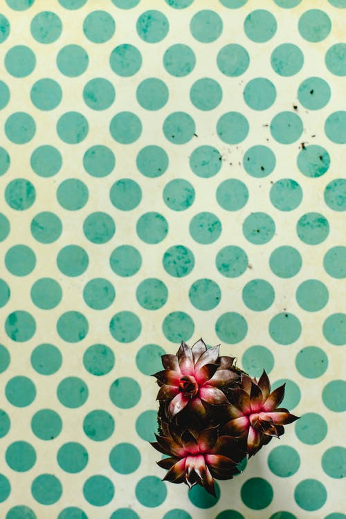 Red and Green Pineapple Wall Decor