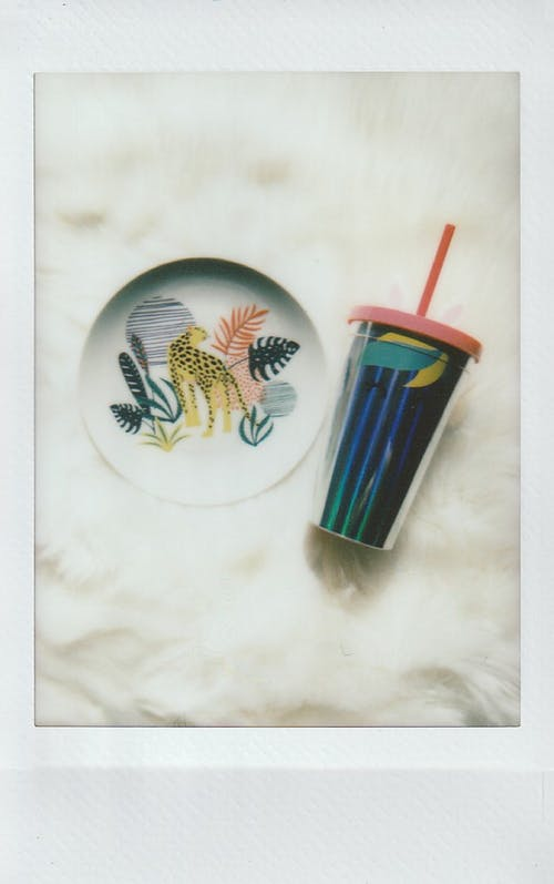 Ceramic Plate with Plastic Cup