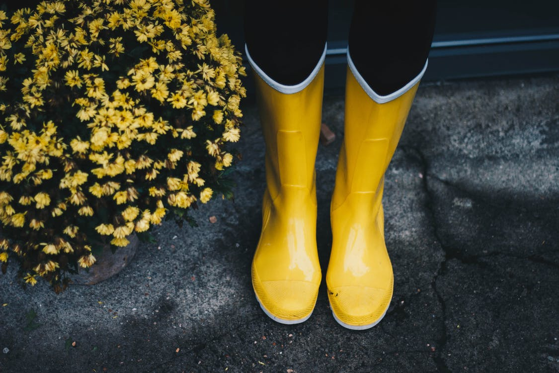 Photo of Yellow Boots Near Flowers