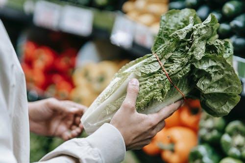 Unrecognizable customer with fresh lettuce