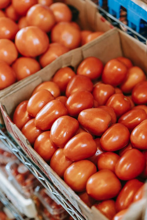 From above of round and oval shaped tomatoes in containers on shelf in grocery shop in shiny light