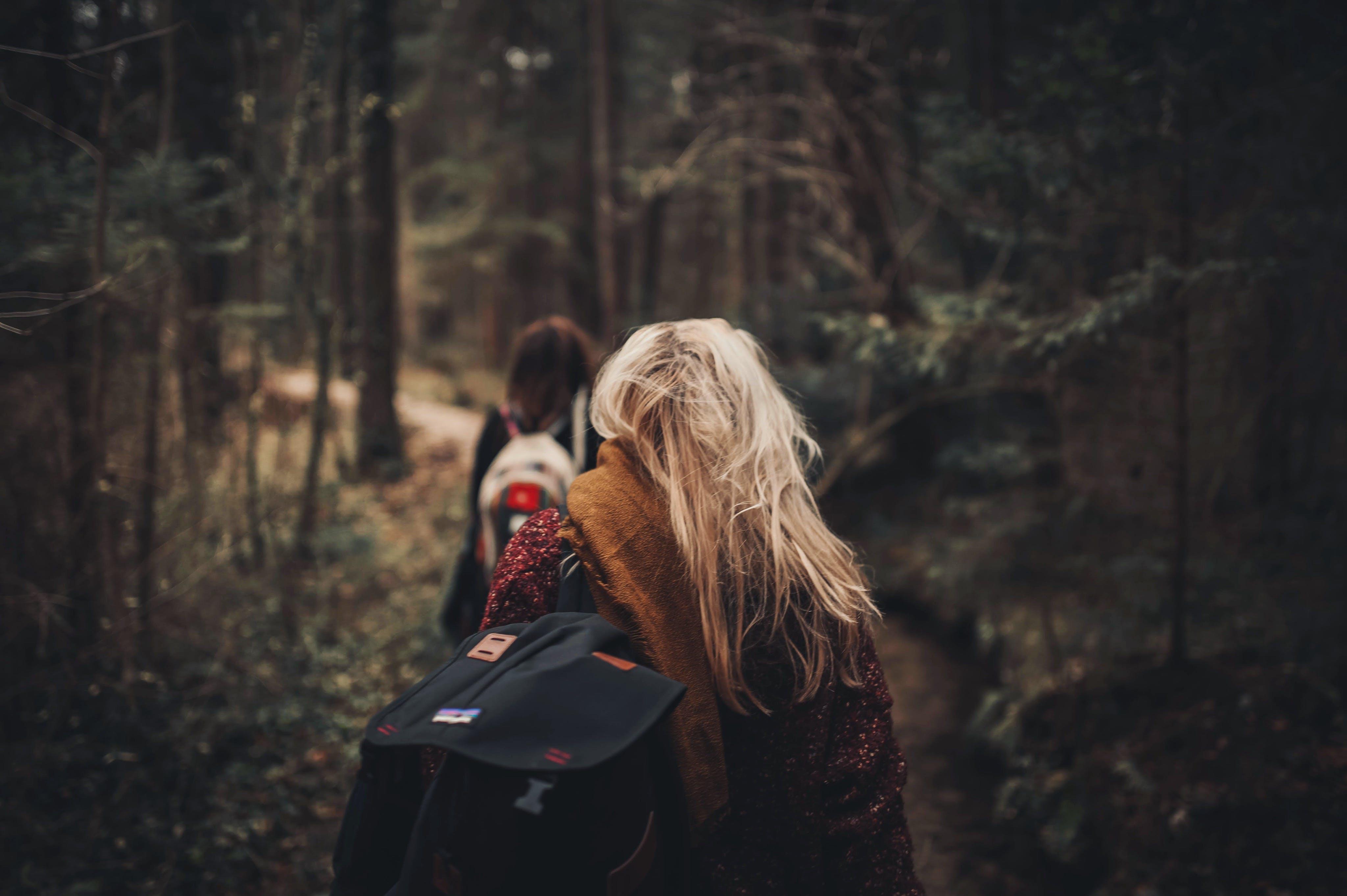 Základová fotografie zdarma na téma batoh, holky, krajina, les