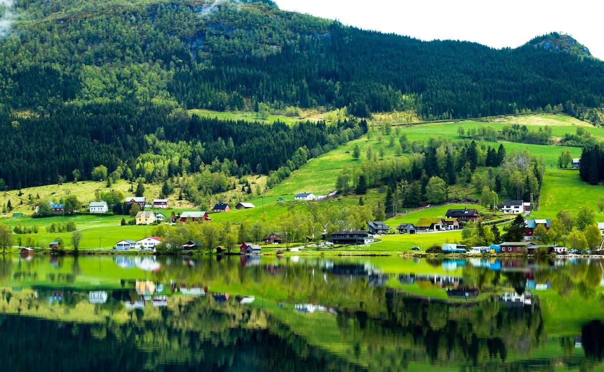 River Near Green Grass Field