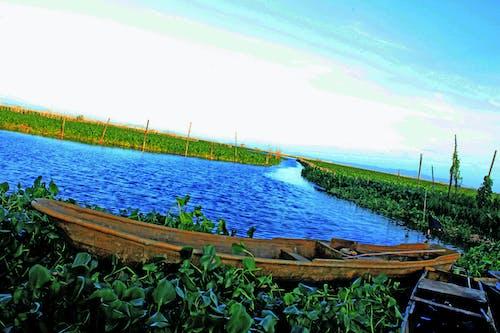 Бесплатное стоковое фото с whilt, Азия, бохол, веревка