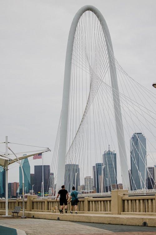 Male friends walking dogs on leash on modern bridge with geometric elements in city