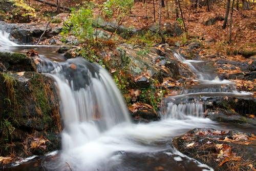 Photos gratuites de cailloux, cascade, feuillage, flot