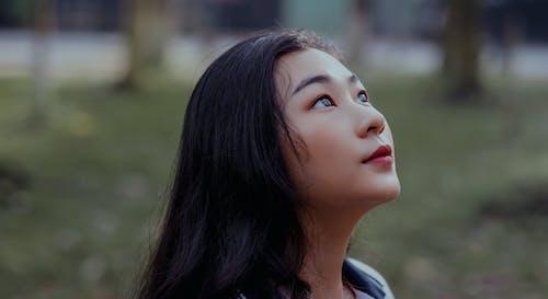 Immagine gratuita di capelli, concentrarsi, donna, donna asiatica