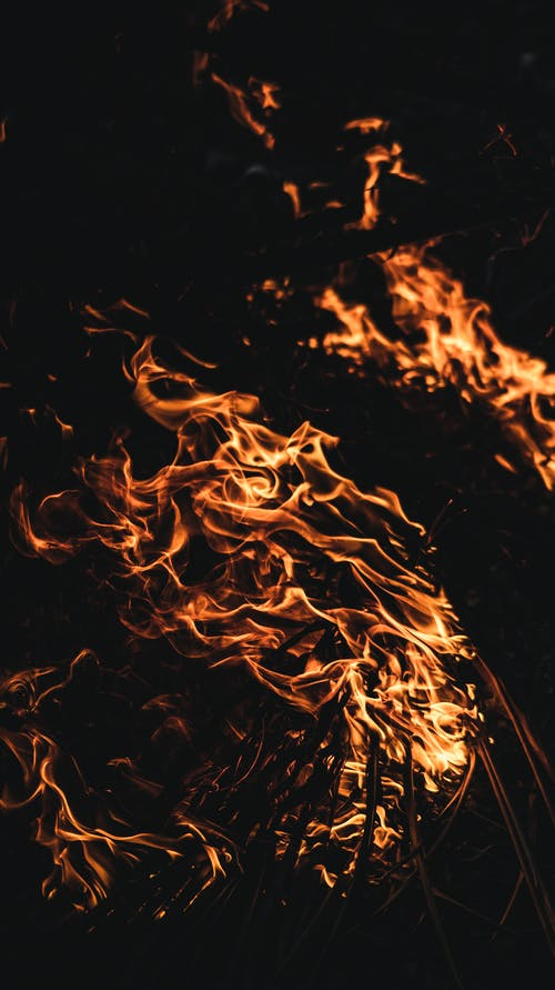 Burning fire in darkness in woods
