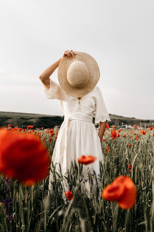 Gratis stockfoto met anoniem, bedek gezicht, bloeien
